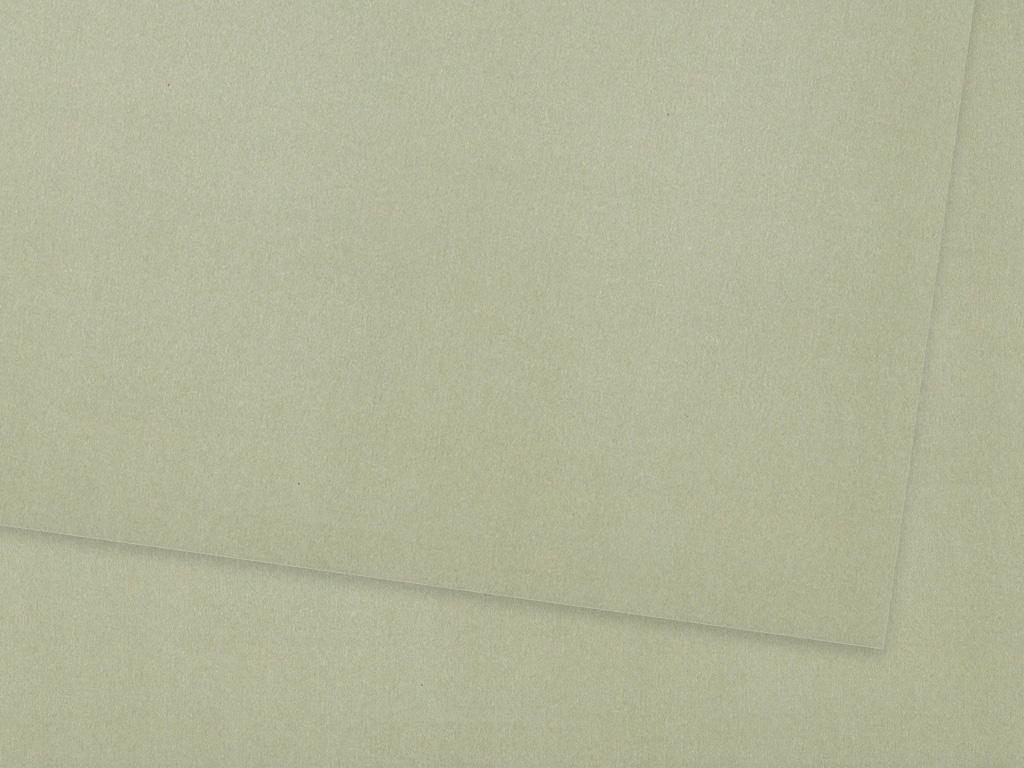 Värviline paber Ursus A4/130g 88 matt silver
