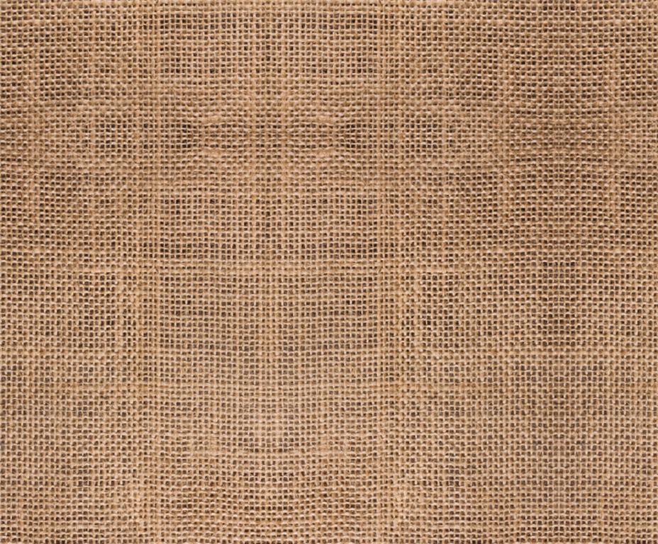 Kartong pildiga Ursus 49.5x68cm/300g Jute