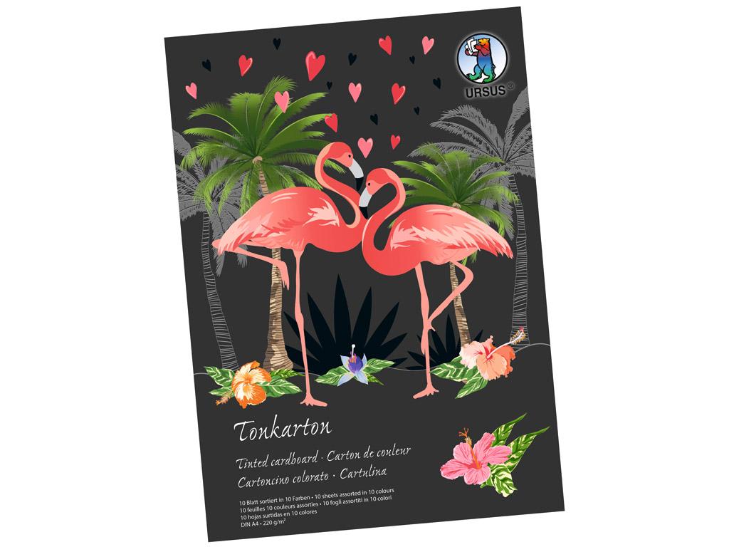 Coloured carton pad  Ursus Special Edition A4/220g 10 sheets