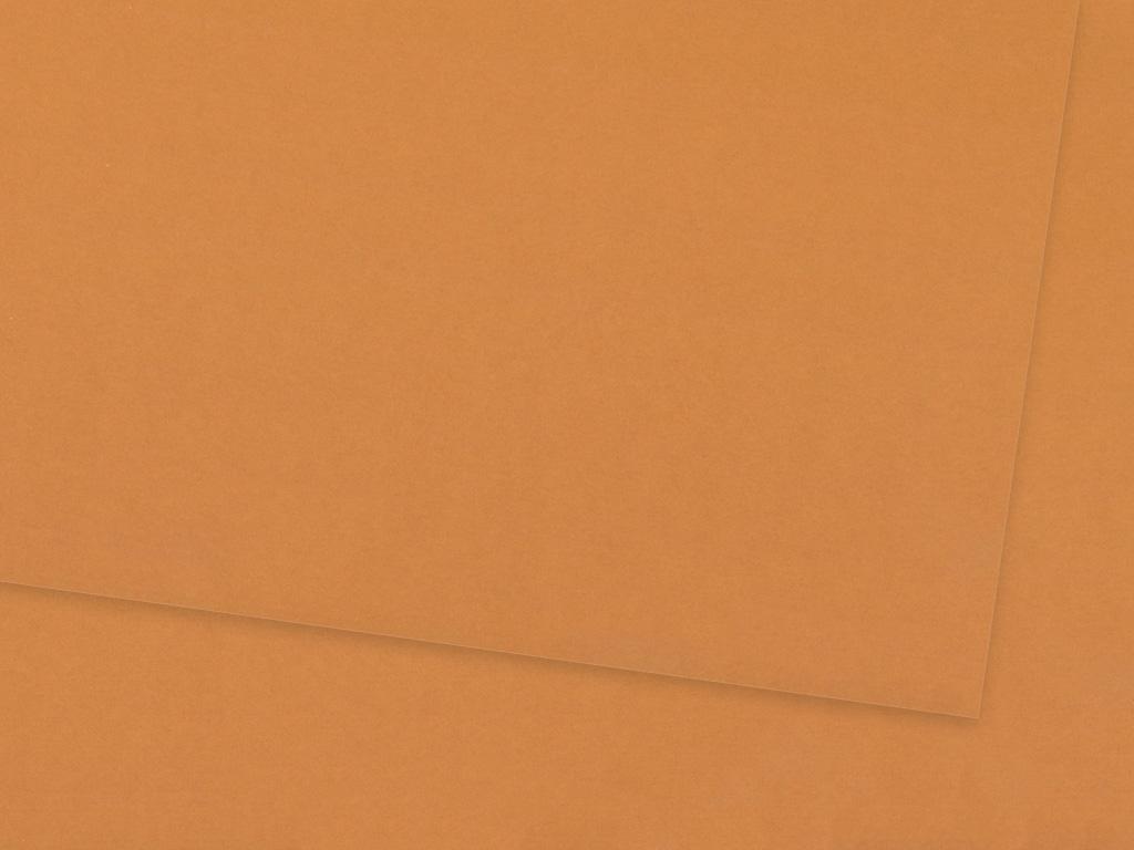 Kartong Ursus A4/300g 75 fawn brown